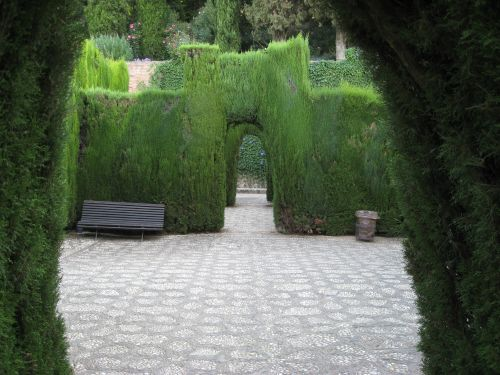 Picture 10f: Alhambra / Green hedges 1