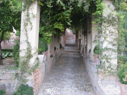 Picture 8: Alhambra / Shady alley