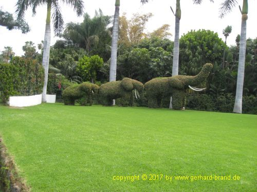 Picture 2: The Loro Parque in Puerto de la Cruz (Tenerife) a very well maintained park.