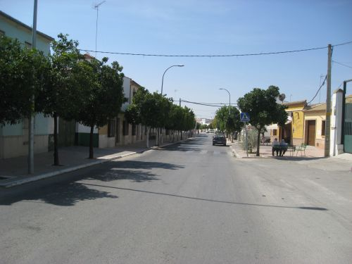 Picture 1a: Marinaleda, the main street through the town