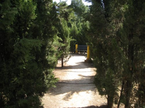 Picture 2a: Silent side ways in the park of Marinaleda