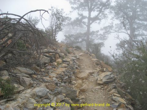 Picture 12: Narrow footpath to the Moonscape (Paisaje Lunar)