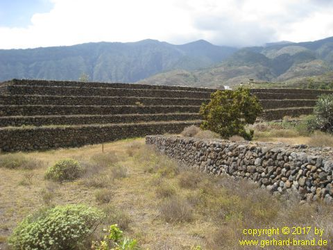 Picture 7: Pyramids of Güímar
